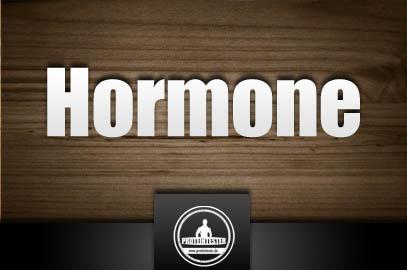 Hormone und Fettabbau